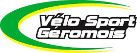logo vsg web