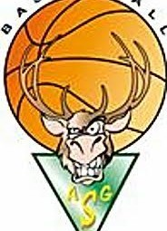basket logo