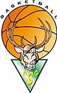 basket logo