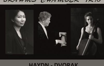 Brahms chamber trio 2016