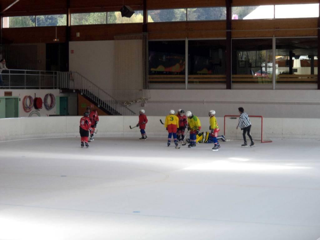 Gérardmer Hockey lynx (1)
