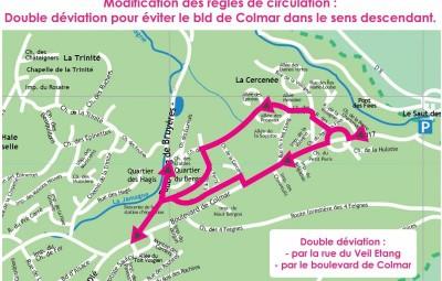Circulation triathlon (2)
