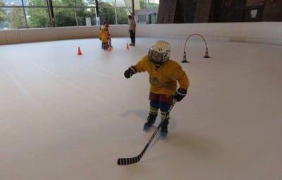hockey lynx (1)