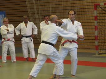Stage kata Ligue grand est (4)