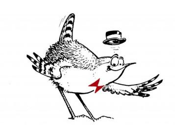 logo-Oiseaux-Nature-67Ko
