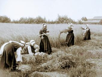 """Femmes aux champs, Setomaa. """"Voyage à travers le Setomaa"""", Johannes Pääsuke, 1913. www.france-estonie.org."""