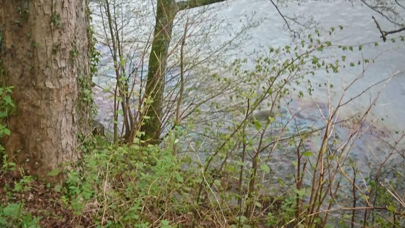 accident droite lac Gérardmer (2)