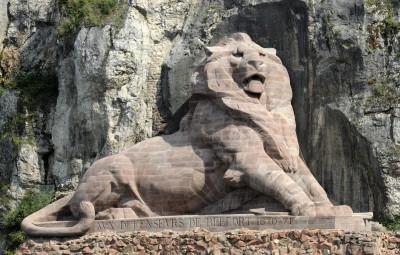 lion-libre-de-droits