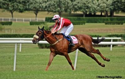 courses-hippodrome-Vittel-25juin-6