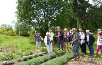 jardins bernadette