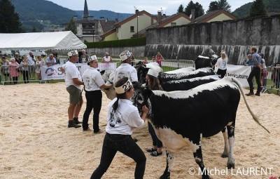 foire à la vache saulxure
