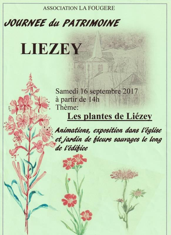 liezey plantes