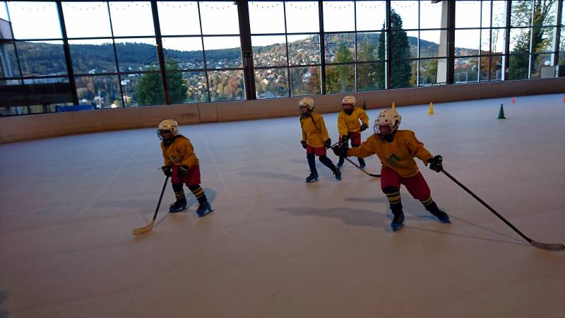 hockey asg lynx rentrée (1)