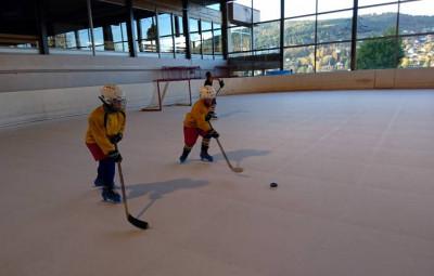 hockey asg lynx rentrée (2)