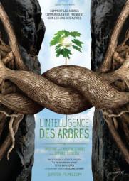 L_Intelligence_des_arbres