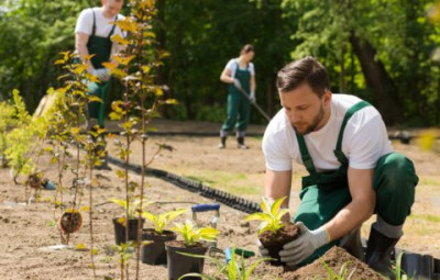 ares jardinage