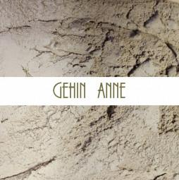 Anne GEHIN