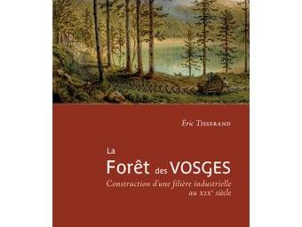 La-foret-des-Vosges