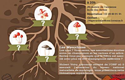 atlier CEN champignons