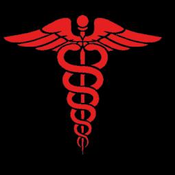 logo infirmier