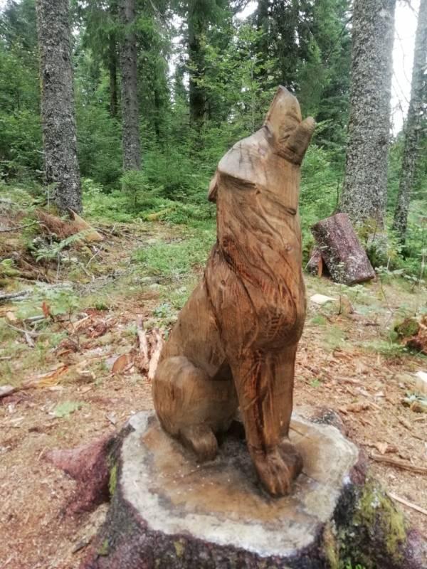 loup bois