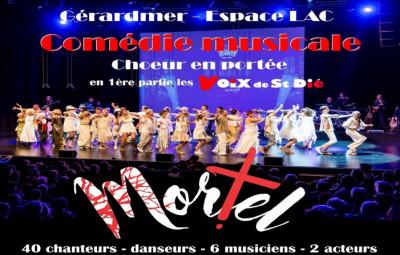 Gérardmer-Voix_Saint-Dié