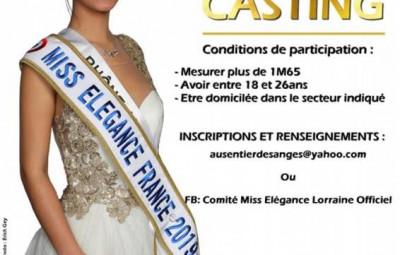 miss elegance 2020 casting vosges