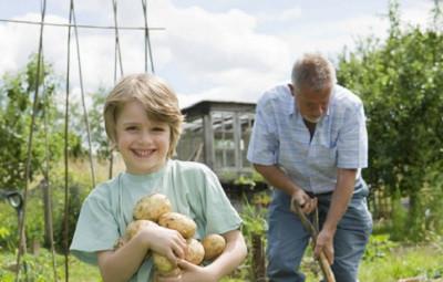 Boy gardening with grandfather
