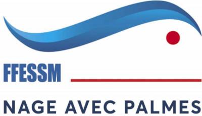 FFESSM palmes