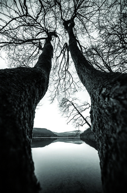 ©Eric Zugmeyer