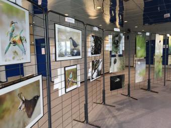 Une exposition avait été mise en place pour l'occasion et la projection d'un documentaire de Vincent Munier venait clore la séance.