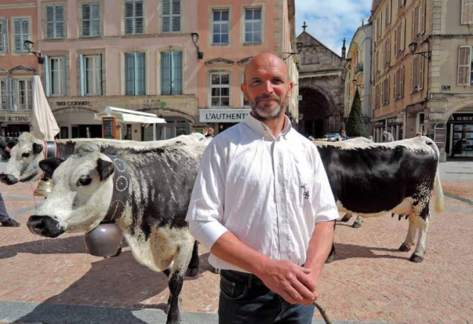 vaches vosgiennes rues Epinal